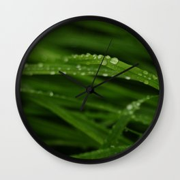Dew Wall Clock