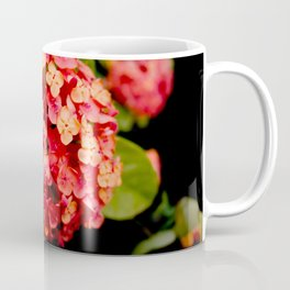 Maui Red Coffee Mug