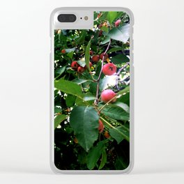Among the Cherries Clear iPhone Case