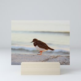 Sandpiper bird enjoying some relaxing time by the sea Mini Art Print