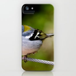 Beautiful Madeiran chaffinch bird standing one one leg at wire. iPhone Case