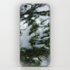 Merry Christmas and Happy New Year! iPhone & iPod Skin