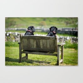 Two Fat Ladies Canvas Print