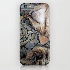 Ecstatic cat Slim Case iPhone 6s