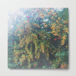 Fall Waterfall Tree Metal Print