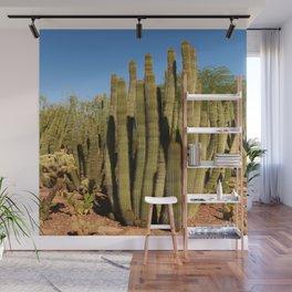 Organpipe Cactus Wall Mural