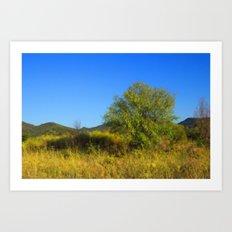 Country Landscape Art Print