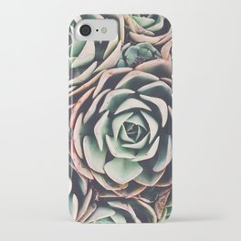 Succulent IV iPhone Case