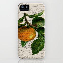 Shabby French botanical print tangerine clementine mandarin orange iPhone Case