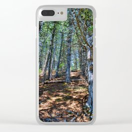 Trail in the forest Clear iPhone Case