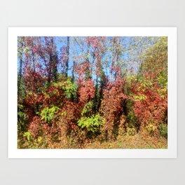 fall - winter Art Print