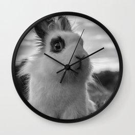 A funny Rabbit Wall Clock