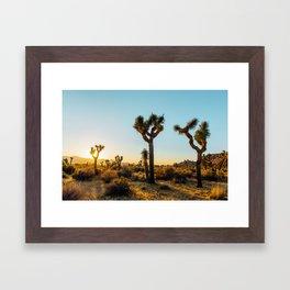 Last Light at Joshua Tree Framed Art Print