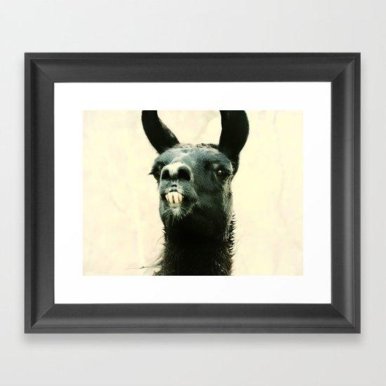 Mr. Llama Framed Art Print