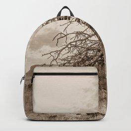 Fallen Backpack