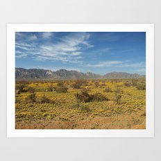 The New Mexico I know Art Print
