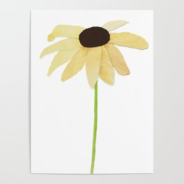Watercolor Flower Black Eyed Susan Poster