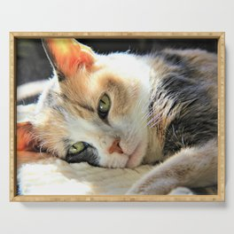 Kitty Light by Reay of Light Serving Tray