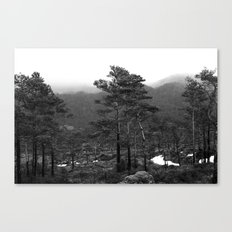 THE WOODS II Canvas Print