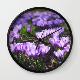 Purple Crocuses Wall Clock