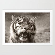 Tiger Cub 1 Art Print