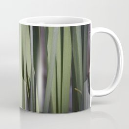 Spring daffodils bulbs in the morning Coffee Mug