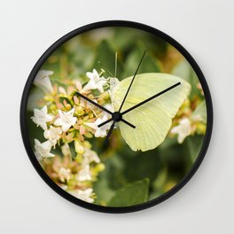 Lemon Migrant Butterfly Wall Clock