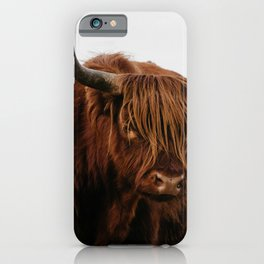 Highland Cow in nature | Wild Scottish Highlander, cattle in the Netherlands | Wild animals | Fine art travel and nature photography art print iPhone Case