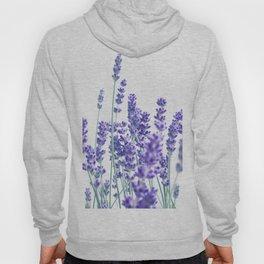 Fresh Lavender #1 #decor #art #society6 Hoody