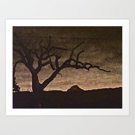 Crooked Limbs Art Print