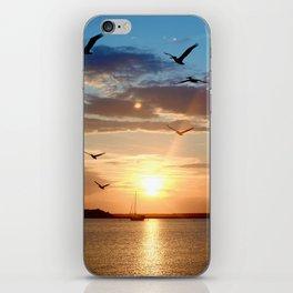 birds over the horizon iPhone Skin