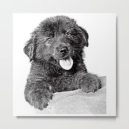 Cute fluffy puppy Metal Print