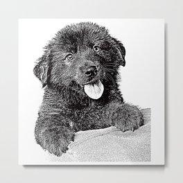 Cute fluffy puppy Metal Print