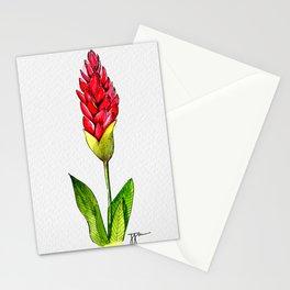 Ginger Lillie Stationery Cards