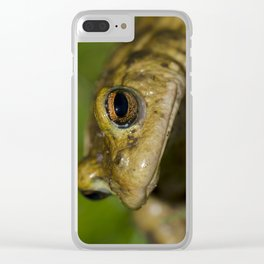 Frog posing Clear iPhone Case