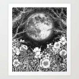 Midnight in the Garden Art Print