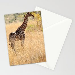 African Giraffe on a Bright Day Stationery Cards