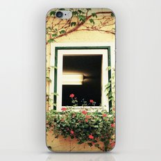 Window and ivy iPhone & iPod Skin