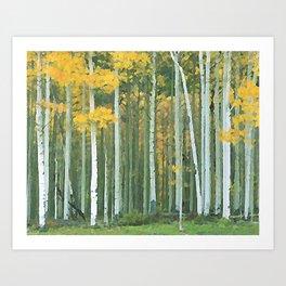 Aspen Trees on Owl Creek Pass, Colorado Art Print