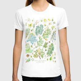 plantas medicinales T-shirt