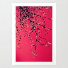 février Art Print