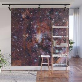 Prawn Nebula Wall Mural
