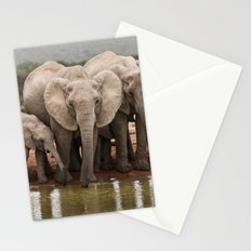 African Elephants Stationery Cards