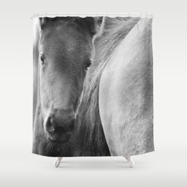 Original horses photo. Black & White, fine art, animal photography, landscape, b&w Shower Curtain