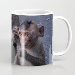 Mother and Baby Macaque Monkey Coffee Mug