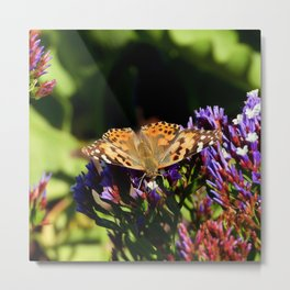 Painted Lady on Statice Blooms Metal Print