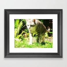 CuriousKat Framed Art Print