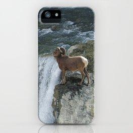 Big Horn Sheep & Rocky Mountain Waterfall iPhone Case