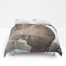 TEXTURES -- Mushroom Uprooted Comforters