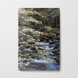 Smoky Dogwoods 05 Metal Print